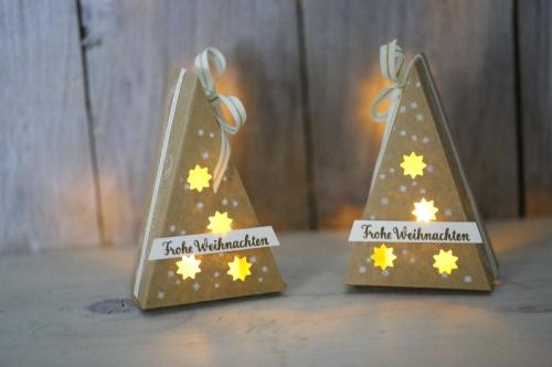 Freitagsvideo Tannenbaum mit Teelicht, Bild1,gebastelt mit Produkten von Stampin\' Up!