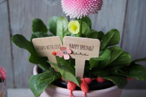 Blumenstecker/Aus meinem Garten, Bild4, gebastelt mit Produkten von Stampin\' Up!