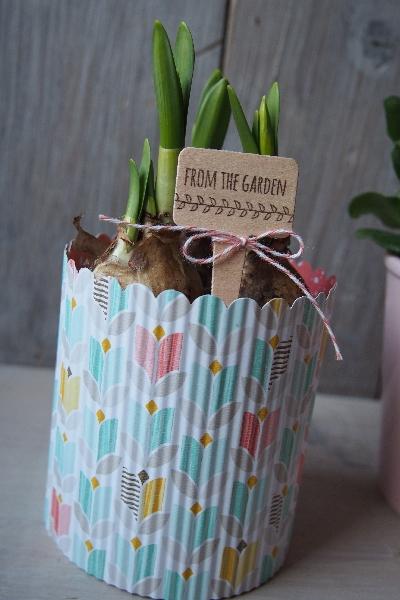 Blumenstecker/Aus meinem Garten, Bild3, gebastelt mit Produkten von Stampin\' Up!
