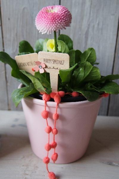 Blumenstecker/Aus meinem Garten, Bild2, gebastelt mit Produkten von Stampin\' Up!